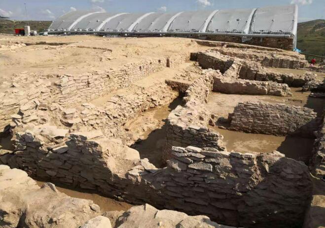 石头有了生命?陕西发现遗址石雕