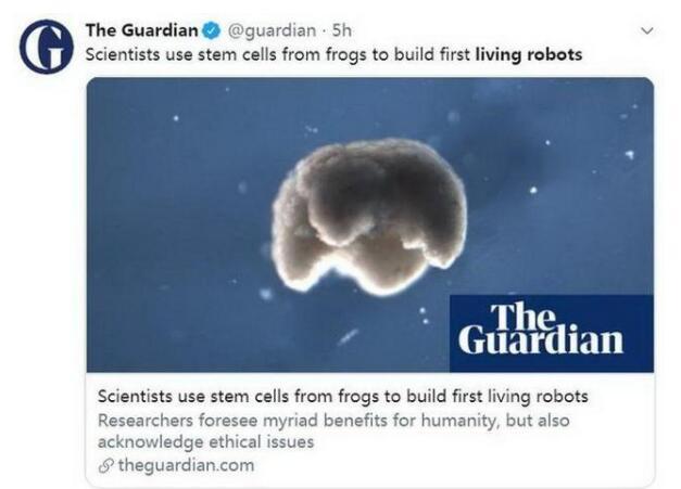 首个活体机器人是怎么回事?太吓人了!终于真相了,原来是这样!