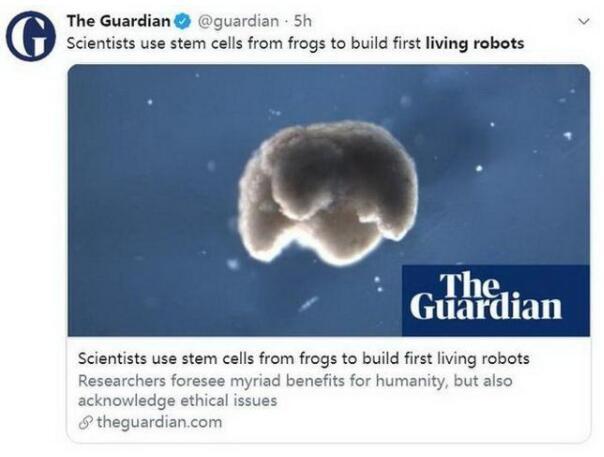 能自愈傷口!首個活體機器人誕生:有兩條短腿,世:有兩條短腿靠本身氣力活靠自己力量活動