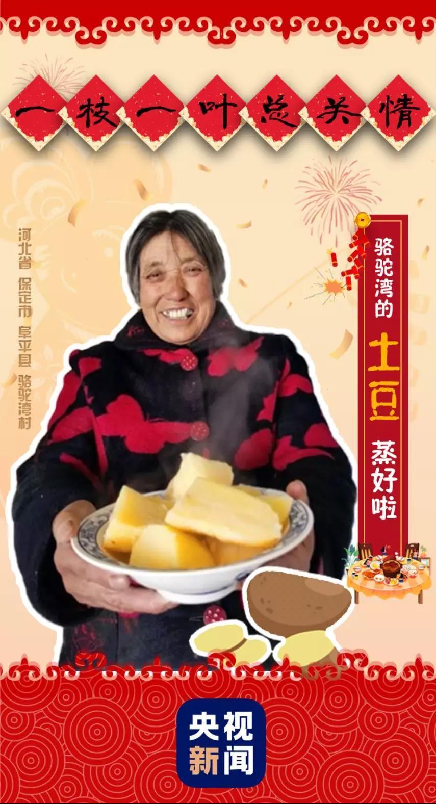 一枝一叶总关情丨骆驼湾:土豆香里话脱贫