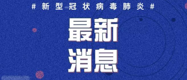 2020年2月13日0时至12时山东省新型冠状病毒肺炎疫情情况