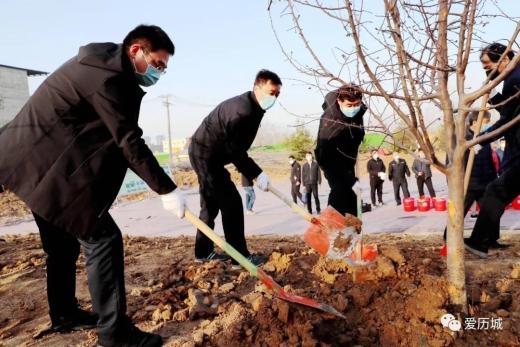 吕涛曹殿军等区领导参加义务植树活动