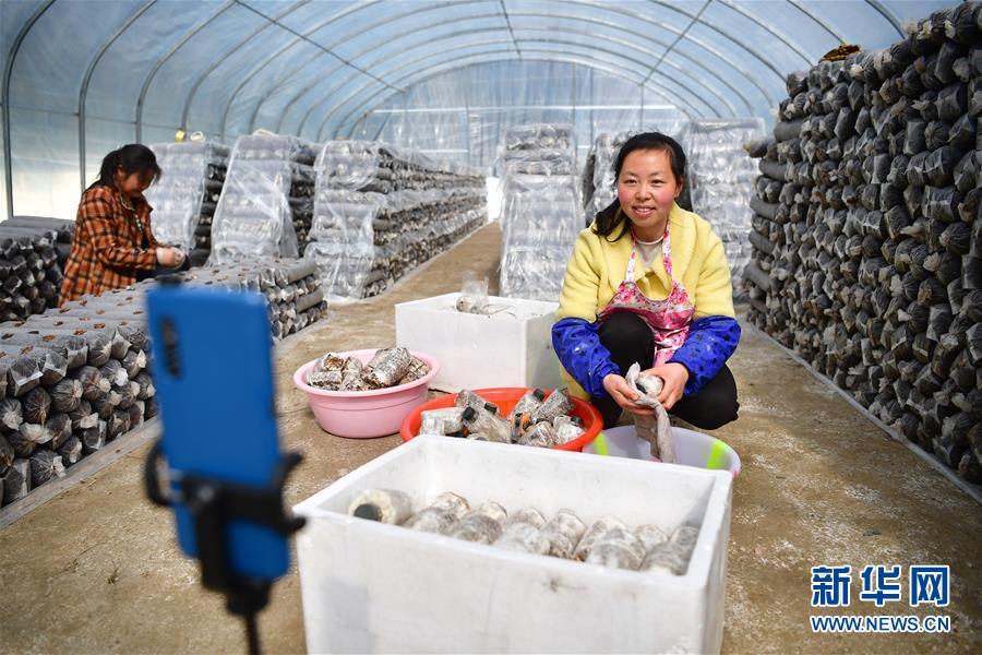 奔向新的幸福——陕西贫困县全部摘帽的N个截面