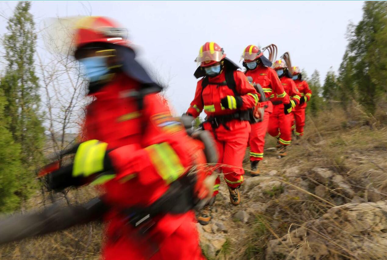 【森林防火 人人有责】务实举措筑牢森林防火安全屏障