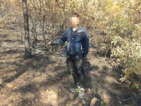 男子扫墓抽烟引发森林火灾 已被采取强制措施