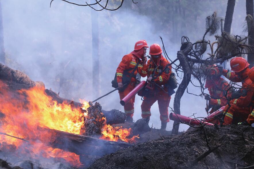 【森林防火 人人有责】四川木里森林火灾初步查明起火原因 11岁男孩点燃松针和木罗松引发