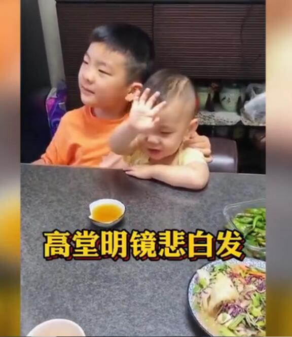 【萌化了】7岁哥哥与2岁弟弟背诵将进酒,网友:上头了上头了