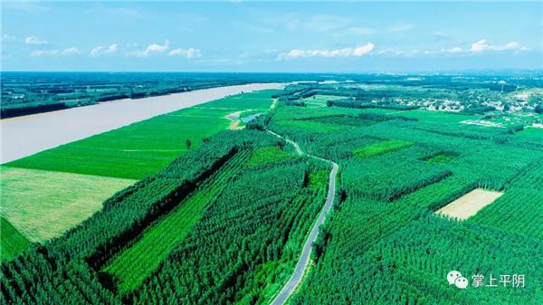 平阴打造沿黄县域发展高地