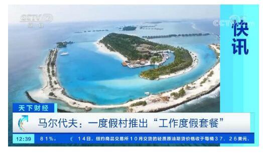 【美呆了】马尔代夫推出工作度假套餐 傍晚还能乘游艇出海看海豚