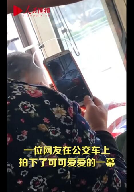 【真你扫我】老奶奶坐公交对着司机的头扫码,有点好笑又有点心酸