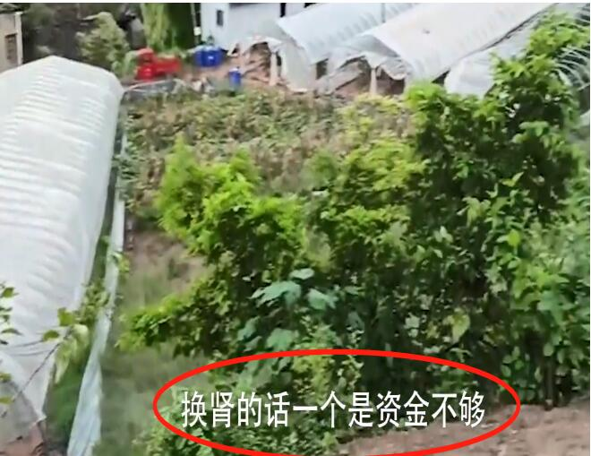 【围观】尿毒症男子包下60亩地自救 二四六七下地干农活