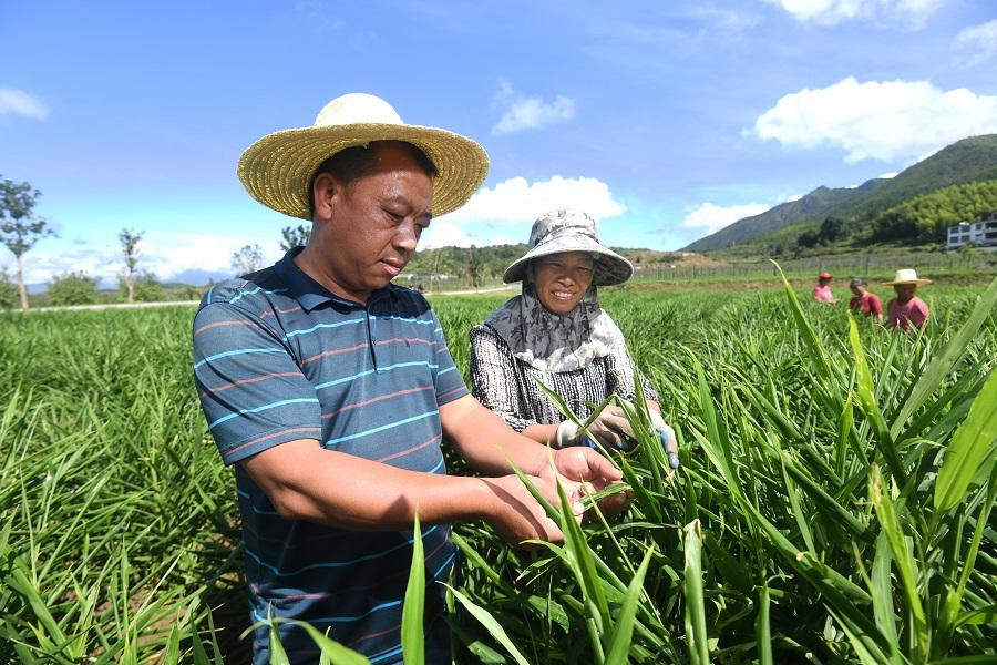 困扰中华民族几千年的贫困问题是怎样得到解决的?