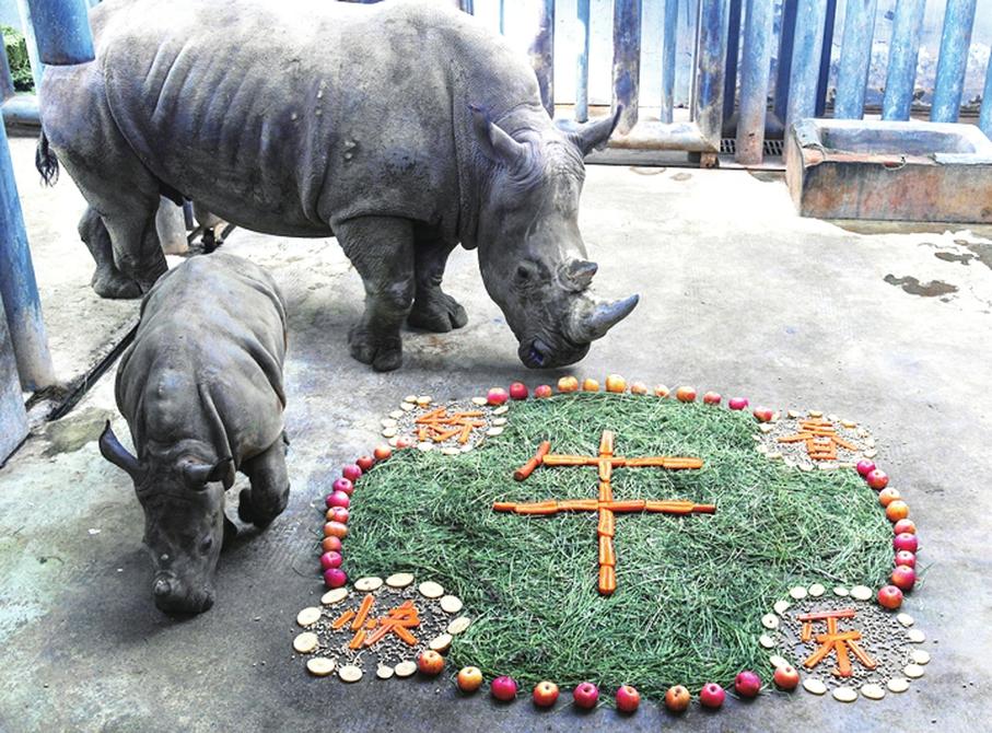 贺岁迎新春 野生动物世界四大福利活动等您来参与