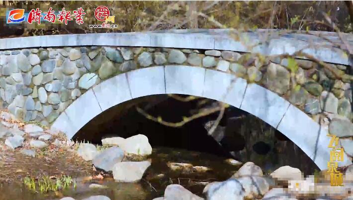 初春的济南森林公园