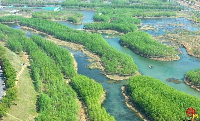 带您领略小清河源头湿地