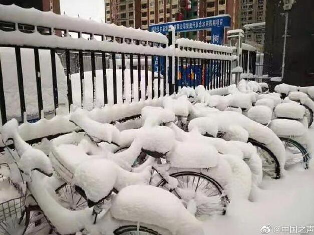 呼伦贝尔4月大雪纷飞!❗️❗️现场图让网友迷茫了:再过两个月都入夏了