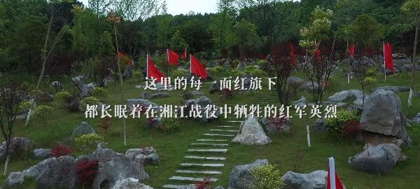 公积金提取时政微纪录丨赤胆铸忠魂——总书记这样回望湘江战役