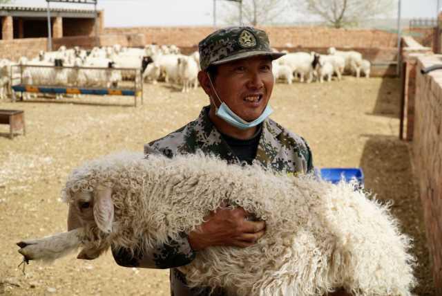"""安阳新闻民族要复兴 乡村必振兴 家家养滩羊,户户发""""羊财""""!皖记沟村民""""喜羊羊"""""""