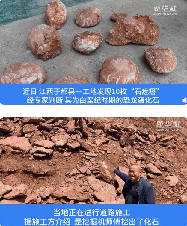 晋城法治网江西工地挖出6600万年前恐龙蛋化石 具体长什么样?