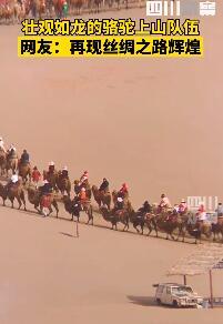 堵骆驼!敦煌景区骆驼排队上山,网友:堵车和堵骆驼哪个闹心?