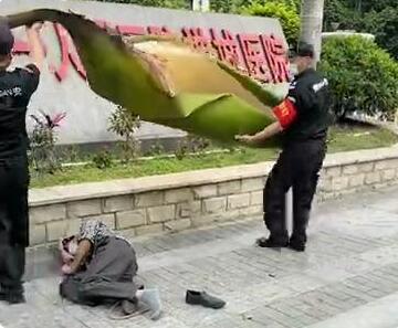 啥情况?男子被一片树叶砸晕在地,到底发生了什么?❓❓