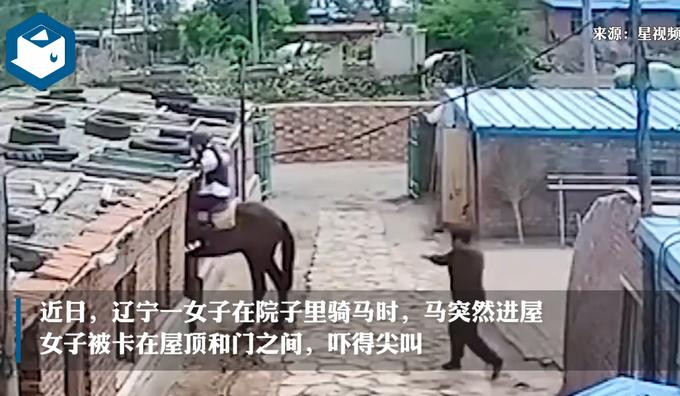 【尷尬了】女子在院子里騎馬,結果馬自己進屋女子被掛房梁上