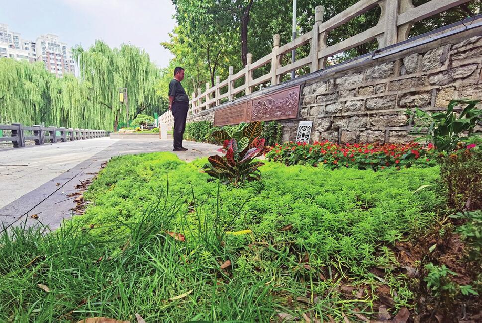 融入中医药文化 东工商河景观提升