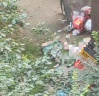 男子将孩子从29楼扔下并捅伤妻子,现场到底发生了什么?