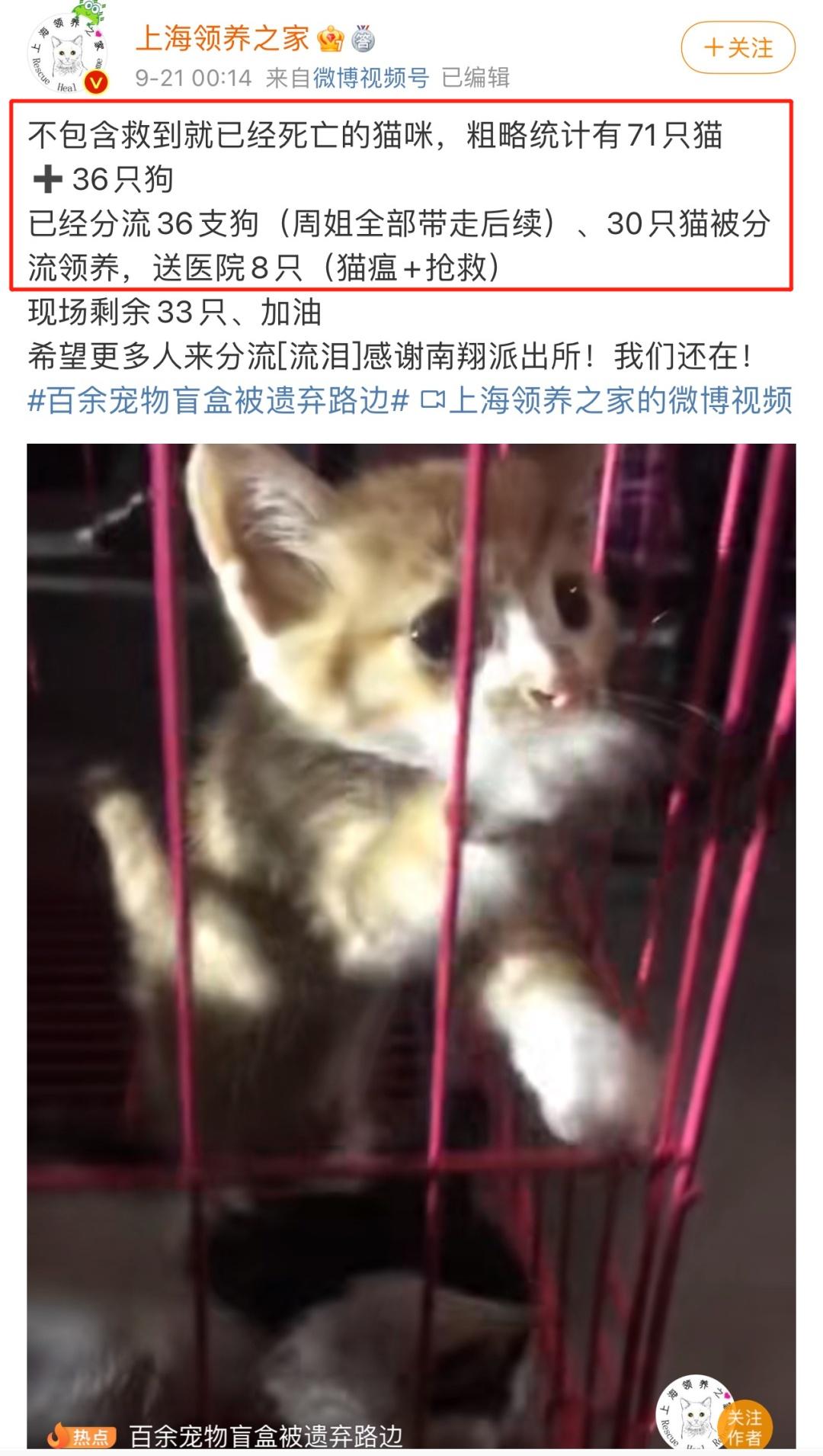 警方回应近百个宠物快递盲盒被遗弃,发生了什么?