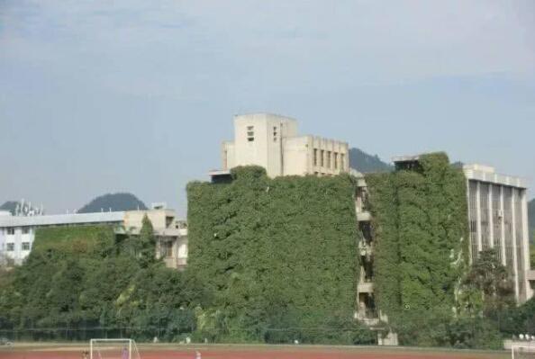 贵阳高校爬山虎占领9层图书馆是怎么回事?终于真相了,原来是这样!
