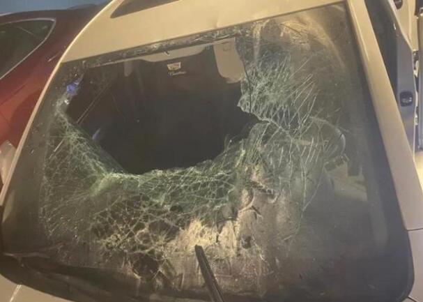 女子狂砸9辆车后让男友赔 因寻衅滋事被刑事拘留