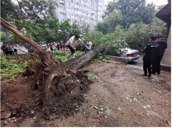 【包万向】北京解除暴雨预警  北京雨后