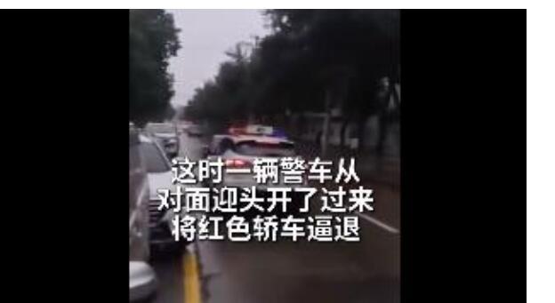 【圍觀】私家車逆行插隊被警車迎面逼退 網友:畫面相當舒適